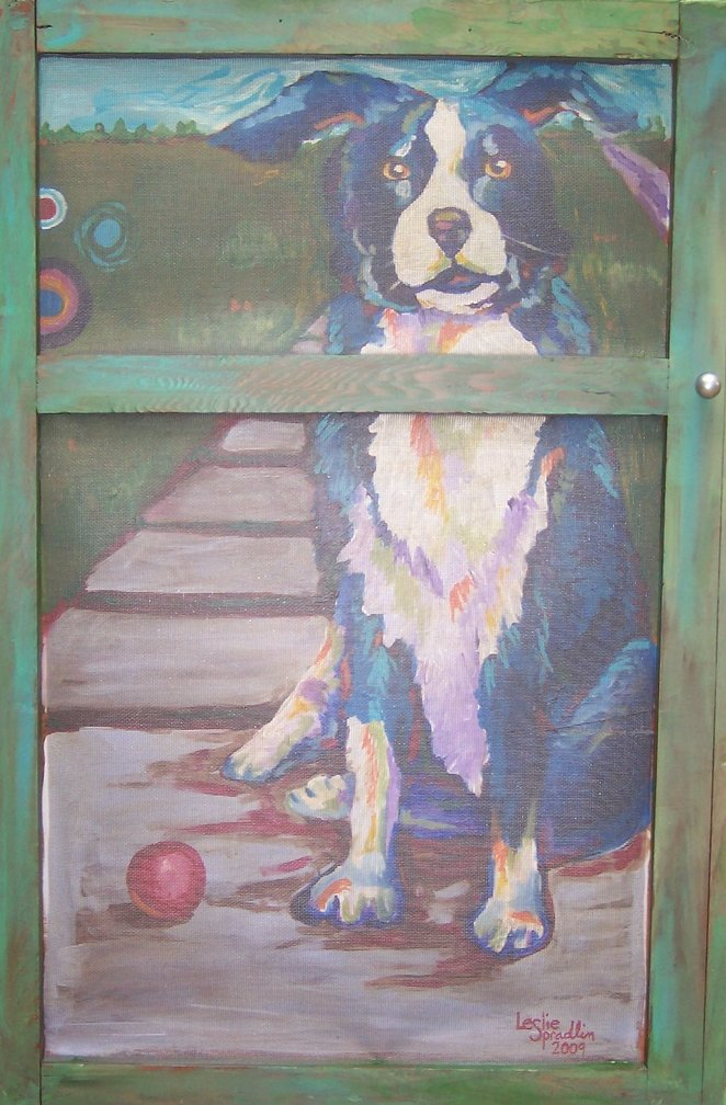 Border Collie Behind a Screen Door